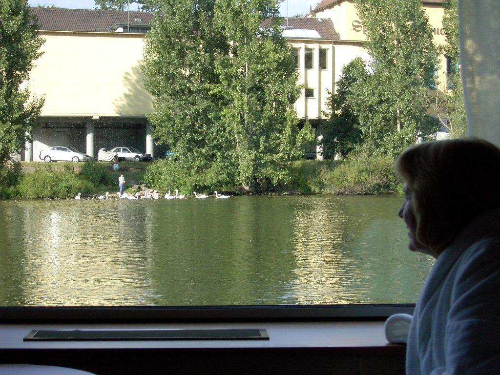 European cruise - deb and swans